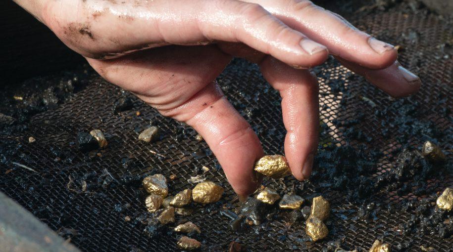 Don't Sleep on Gold, Says Market Expert