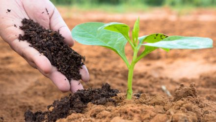 Fertilizer Stocks Could Lift Agribusiness ETF