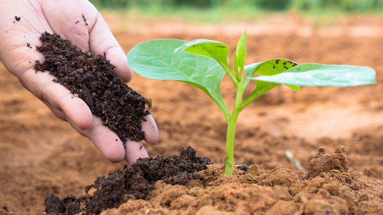 Fertilizer Stocks Could Lift Agribusiness ETF