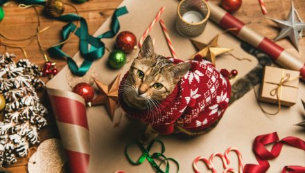 "Gift Giving For Pets Could Boost the ""PAWZ"" ETF This Christmas"