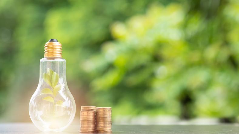 PIMCO Launches Active ESG ETF 'EMNT'