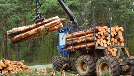 Timber Sector ETFs Made a Great Rebound in 2019