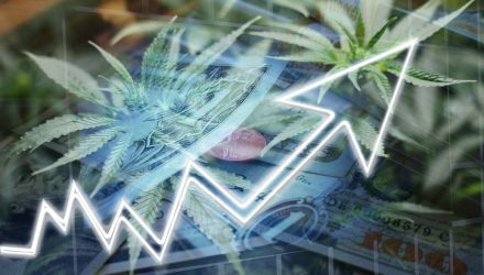 Cannabis ETFs Pop Off on Stellar Organigram Quarterly Report