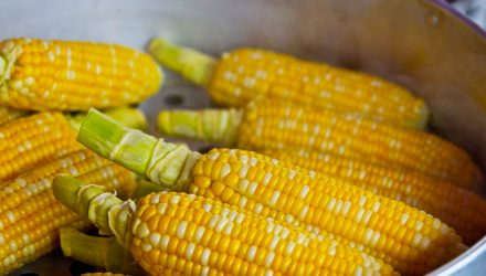 Corn ETFs Could Grow as Global Consumers Look to the U.S.