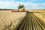 Agriculture Commodity ETFs Could Enhance, Diversify an Investment Portfolio