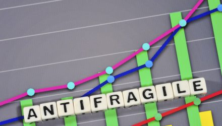 "Look for ""Antifragile"" Opportunities in Today's Market Landscape"