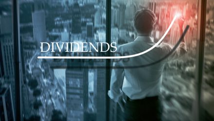 Dividends Have Increased Importance in Today's Market