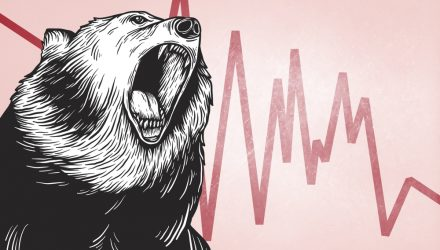 What Should You Do in a Bear Market?
