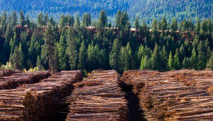 Timber ETFs Grow on Recovering Lumber Demand
