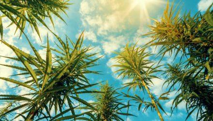 Cannabis ETF Merits Consideration in Post-Virus World