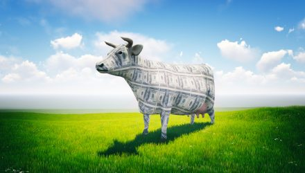 Take Note of This Storming Cash Cows ETF