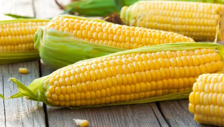 Considering CORN for Commodities Exposure