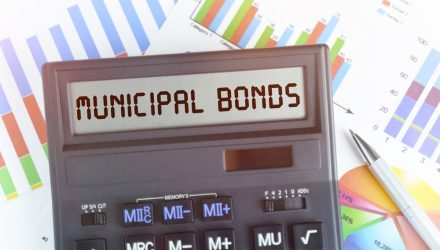 Let's Dive Into the Reasons Why You Need Municipal Bonds