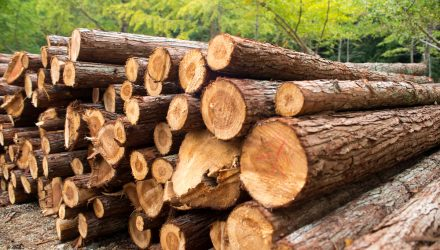 Paper Demand Bolsters Timber and Materials ETFs