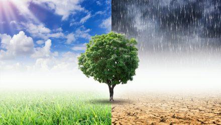Vanguard, BlackRock Offer New ETFs Focused on Climate Change
