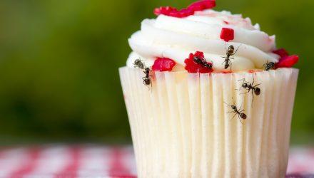 The Sweet Satisfaction of ANT ETFs