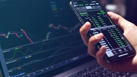 A Momentum Market: How Long Will It Last?
