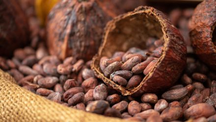 Cocoa ETN Looks Sweet After Buyer-Supplier Spate