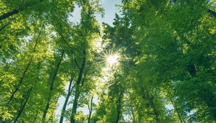 Green Bond ETFs Aren't Just for the Environmentally-Conscious