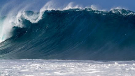Ride November's Record Wave with the Momentum Factor