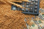 Agriculture ETFs Rallying on Favorable Fundamentals