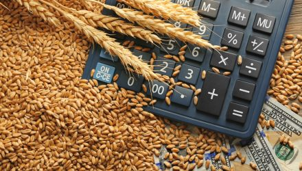 Grain ETFs Jump on a Return to Fundamentals