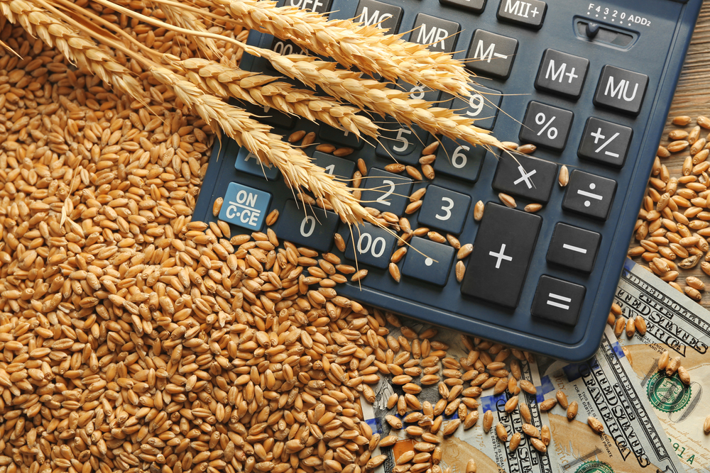 Grain ETFs Jump on a Return to Fundamentals