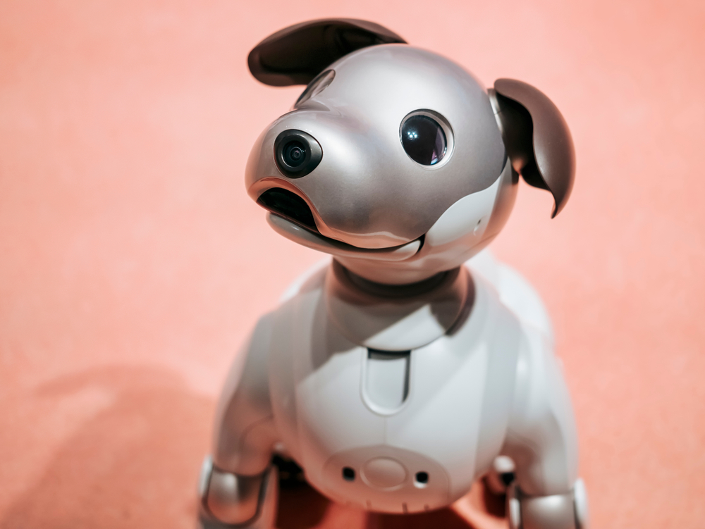 Not the Latest Robot: 'IDOG' ETF Poised for More Gains