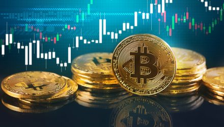 Bitcoin Buying Will Rise This Year, Says Survey