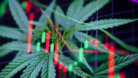 Day Traders Now Helping to Power Marijuana ETFs