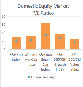 Domestic Equity Market