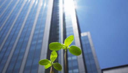 How Can Companies Build Successful ESG Programs?