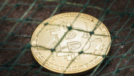Yellen Has Concerns Over Bitcoin Viability Amid Volatile Surge