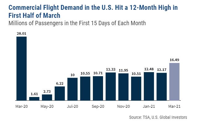Millennial Airline Investors 3