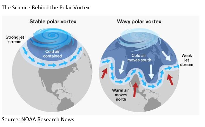 Science Behind Polar Vertex