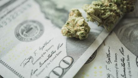 What Can Actively Managed Cannabis ETFs Do for You?