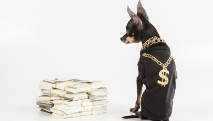 With Dividends Back in Style, This Dog Could Have Its Day