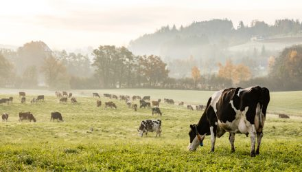 Searching for Cash Cows? VanEck's MOO ETF Has You Covered