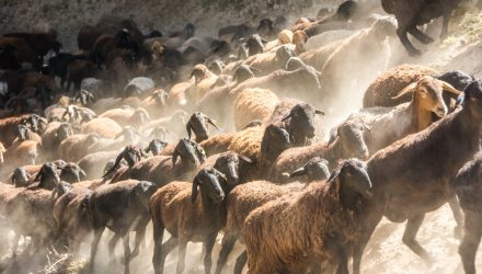 Was Q1 only the start of herd mentality in the market?