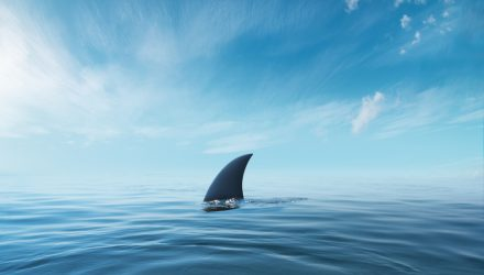 A Shark's in the Water: Kevin O'Leary on Digital Tech