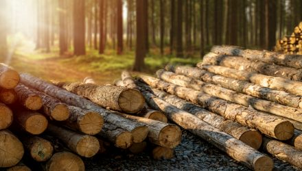 CUT to the Chase with This Lumber ETF