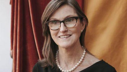 Cathie Wood Headshot