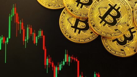 Crypto Markets Panic: Where Things Went Wrong