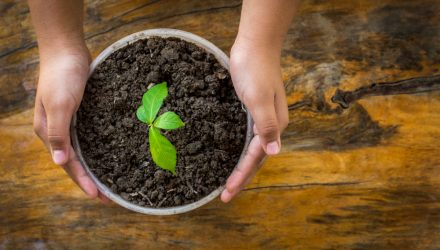 The Case for Active Management in the Fluid World of ESG