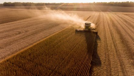 Grains ETFs Surge after Unexpected Shortfall in Planted Acreage