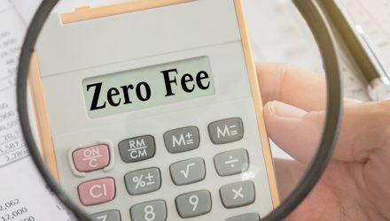 Zero-Fee Funds Are Popular Despite Young Age