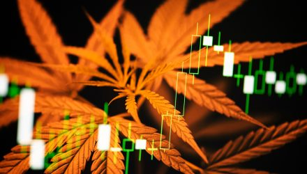 ETFMG Extends Cannabis and Leveraged ETF Lineup with 'MJXL'