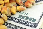 Why Investors Might Consider Commodity ETFs