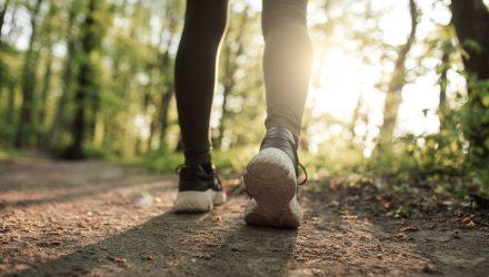 Socially Responsible Investors Aren't Walking the Walk
