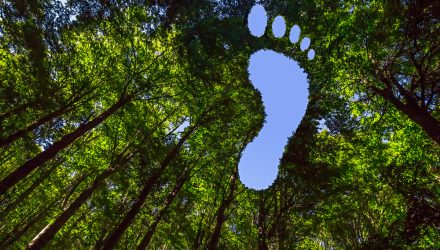 This Canadian Bitcoin ETF Plans to Reduce Its Carbon Footprint by Planting Trees